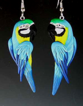 Blue and Gold Macaw Earrings